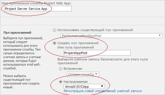 Заполнение формы для создания приложения-службы Project Server